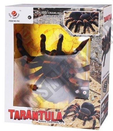 Riesige Spinnenspinne ferngesteuert